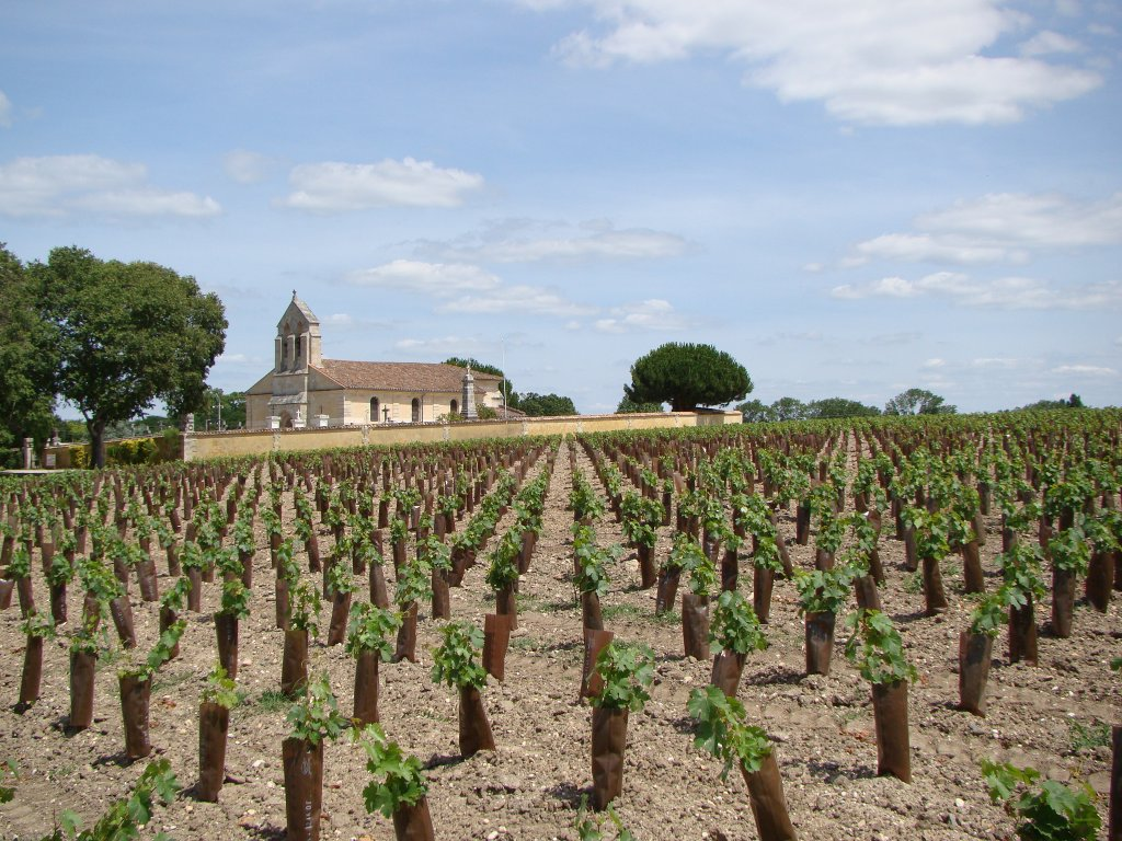 We found this little church surrounded by vineyards
