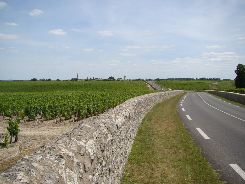 The vast vineyards of Pauillac