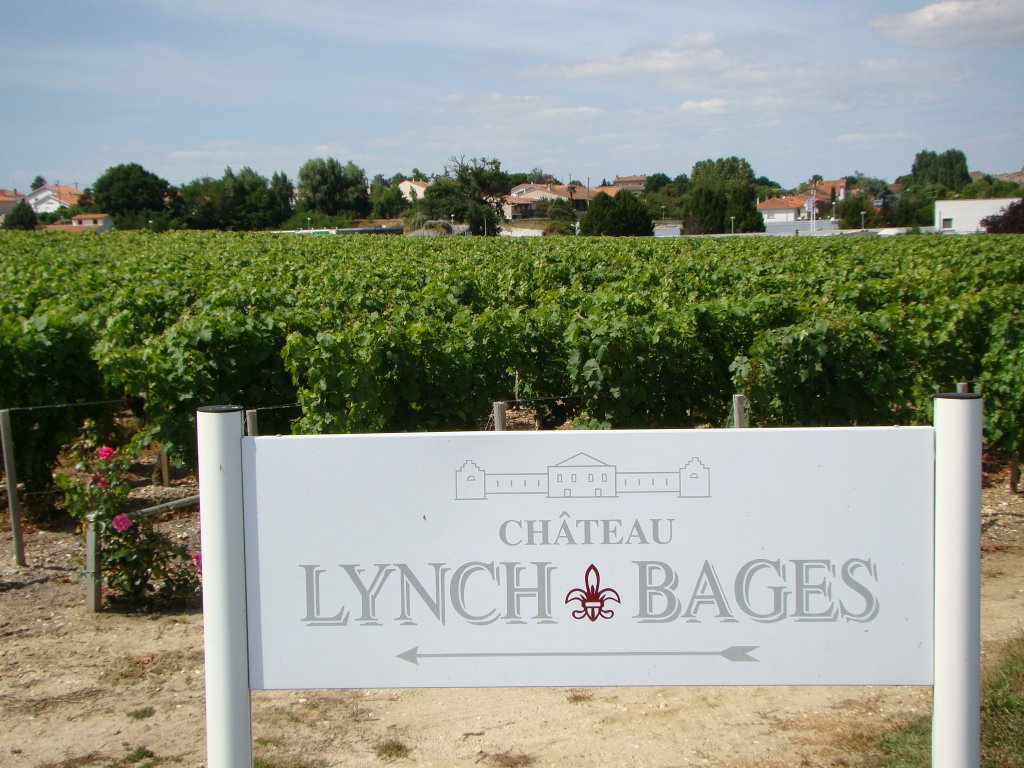 The vineyards of Lynch-Bages