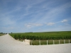 The beautiful wine country of Haut-Medoc
