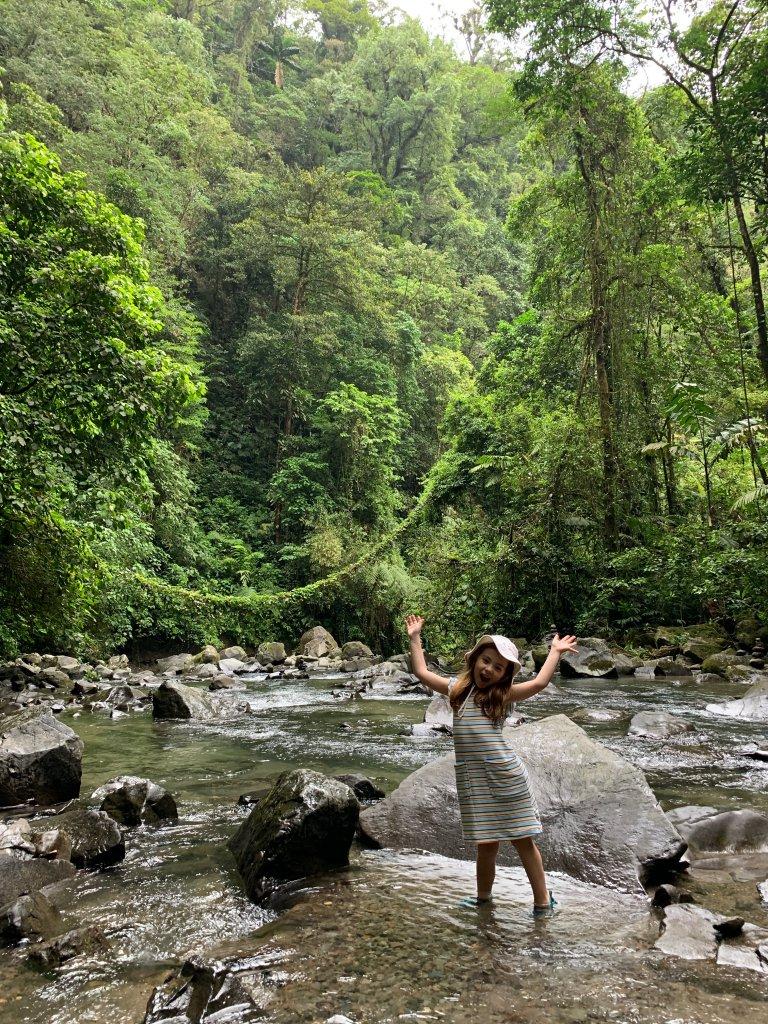 Jungle Silliness