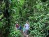 Powering through the Jungle