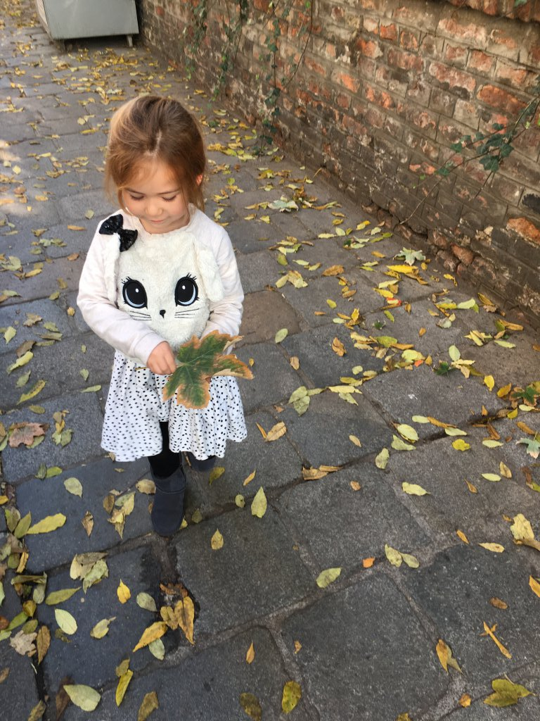 Finding the perfect leaf