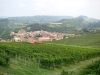 Town of Barolo surrounded by vineyards