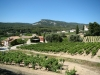 Bandol wine country (Southern France)
