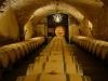 Aging in process - wine maturing in oak