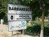 Arriving in Barbaresco