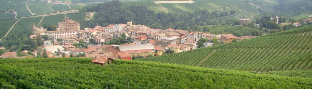 The town of Barolo surrounded by vineyards