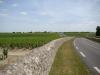 The vast vineyards of Pauillac