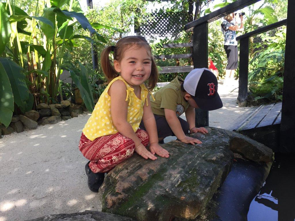 O & J at Butterfly Farm
