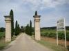 The notable Chateau La Nerthe vineyards